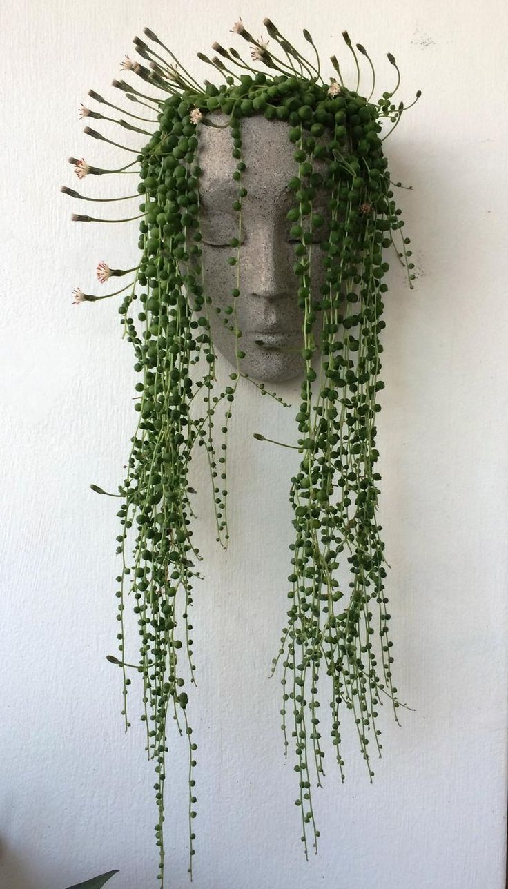 Photo of Head planter wall, planter, headplanters, face planter wall, wall planter, wall pot for plants,