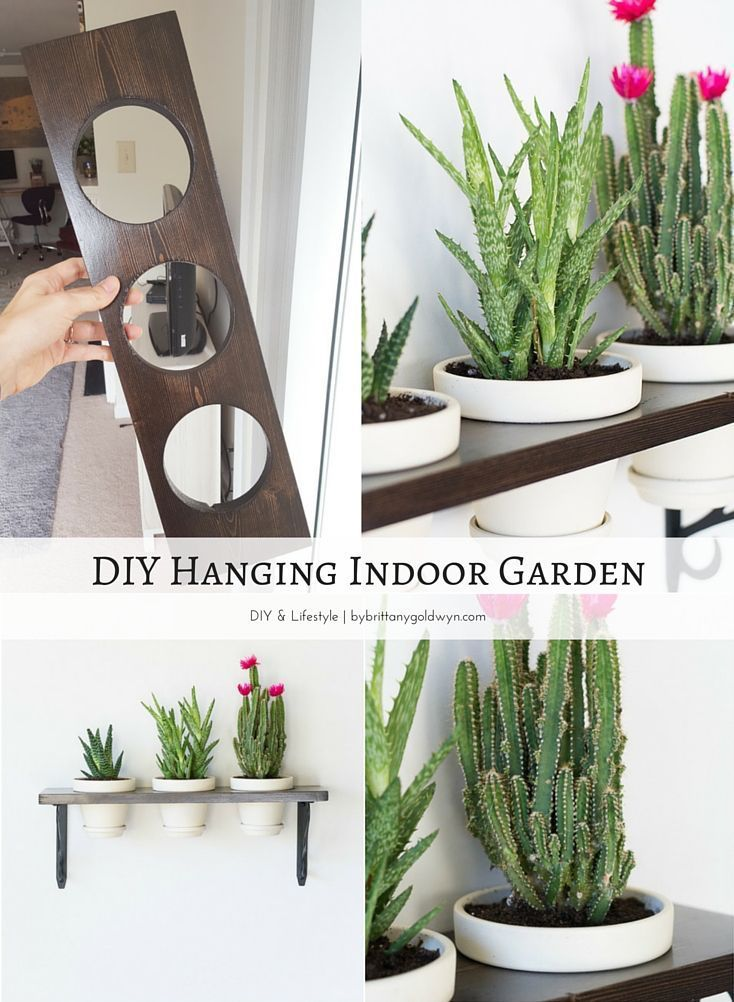 Learn How To Make This Pretty Little Hanging Indoor Garden Great Solution For An Herb If You Have A Spot That S Sunny Enough Also
