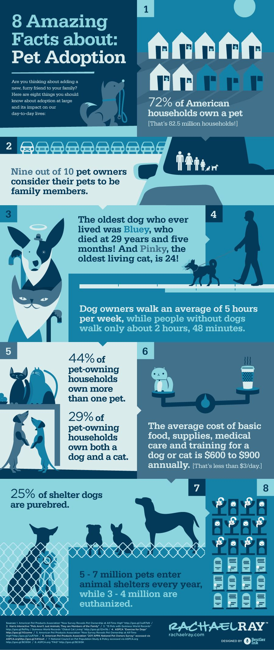 8 Amazing Facts About Pet Adoption infographic