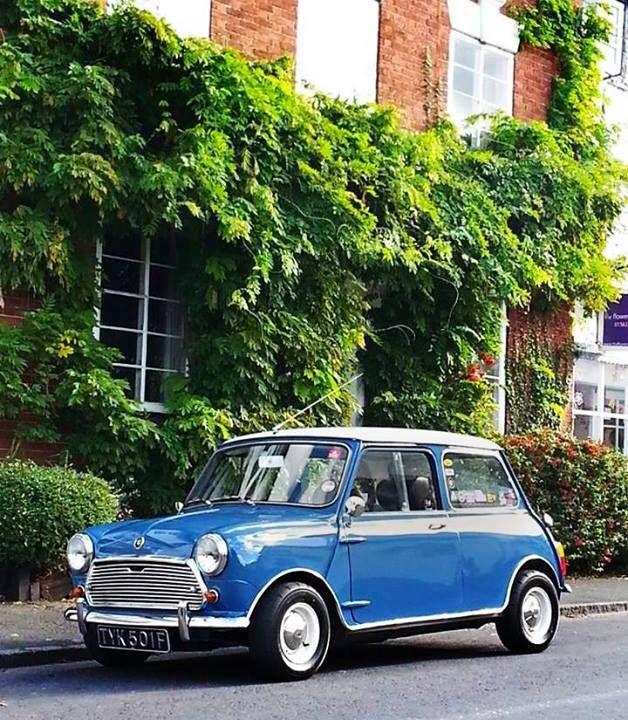 Mini Cooper Classic Minis Mini Morris Mini Cooper S Y Mini