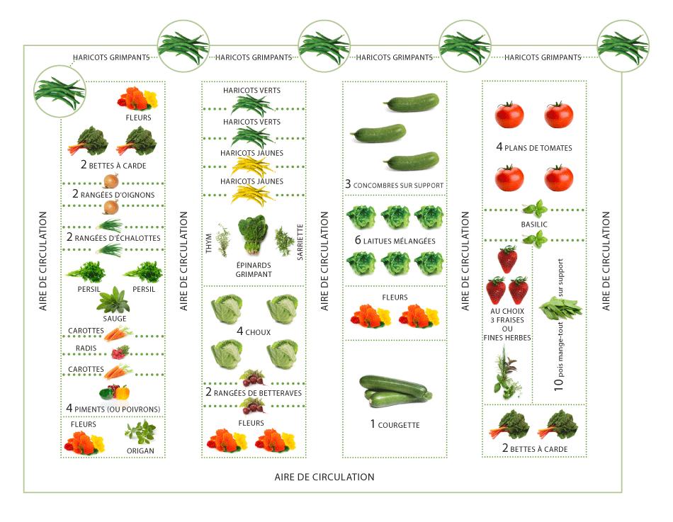 L 39 an prochain mon plan avec quelques modifs cliquez pour voir une version haute r solution - Plan jardin potager sureleve ...