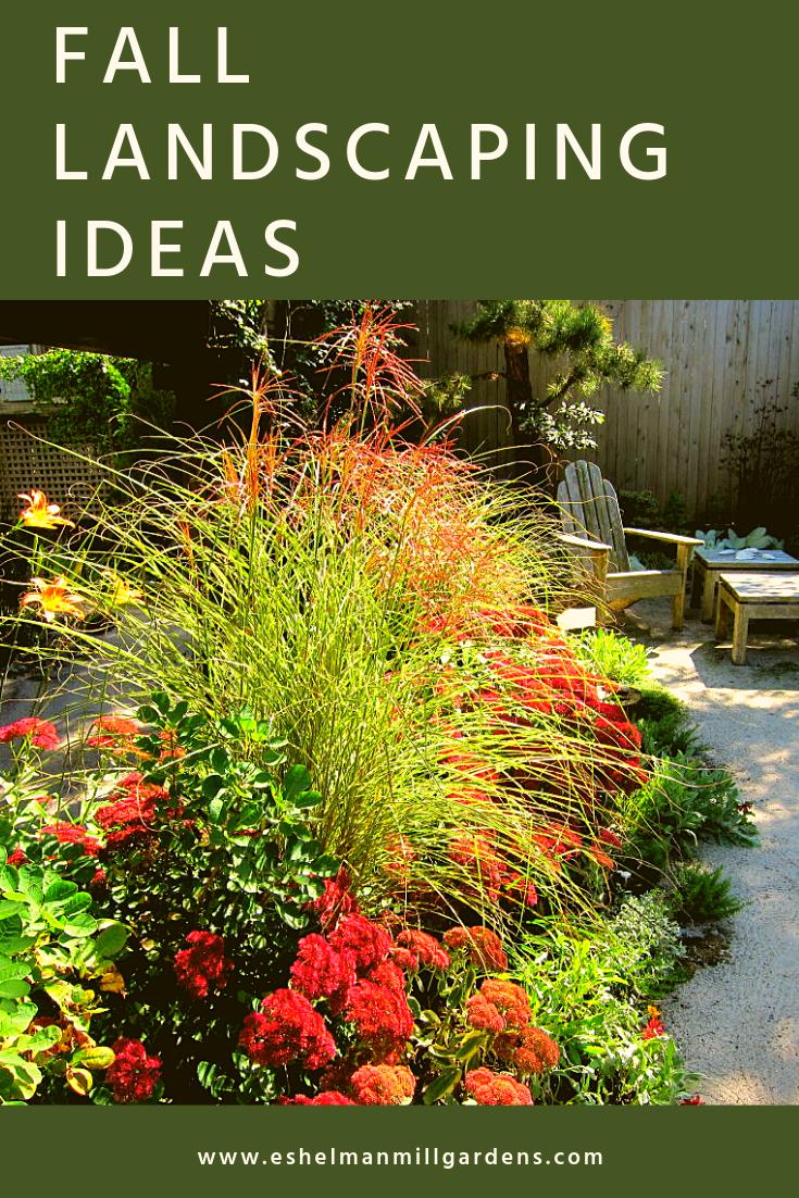 Fall Landscaping Ideas Eshelman Mill Gardens Landscape Design Fall Landscaping Fall Landscaping Front Yard Garden Landscape Design