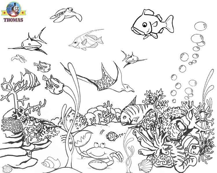 Fish Under the Sea Coloring Pages Ocean Life Pinterest The o
