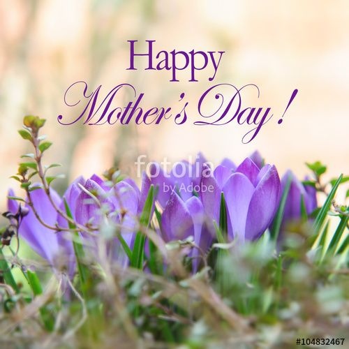 Download The Royalty Free Photo Quot Mothers Day Card With
