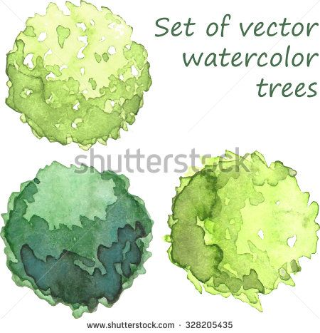 Set Of Watercolor Trees Top View Vector Trees Top View Watercolor Trees Tree Plan Png