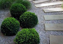 Gravel Walkway Ideas from Earthy Gardens Style