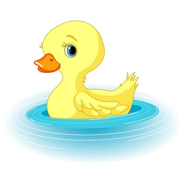 Swimming Duck Duck Animal Icon Duckling Cartoon