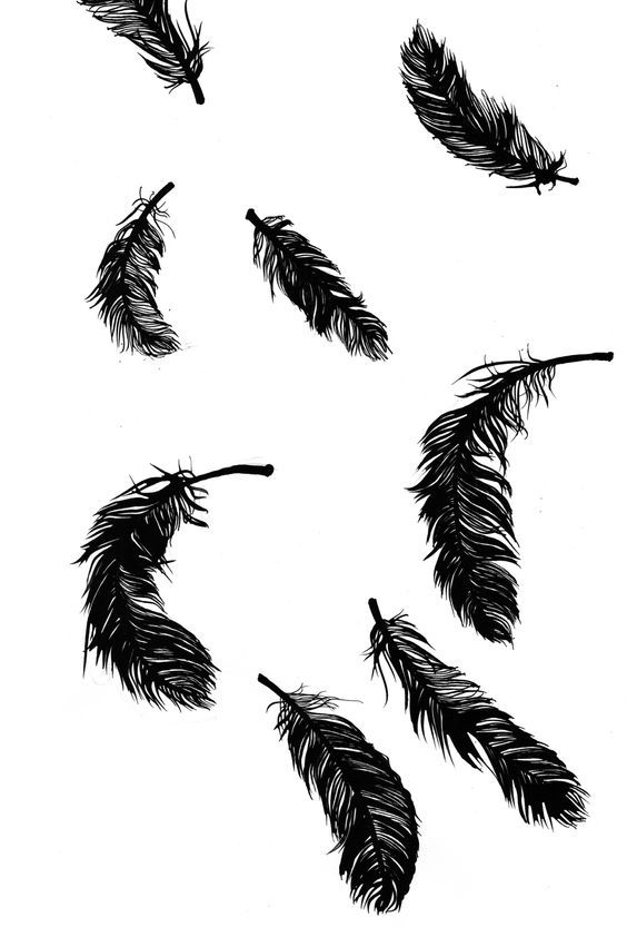 Tributo24 Feather Tattoo For Men Black Aesthetic Wallpaper Feather Tattoo Design