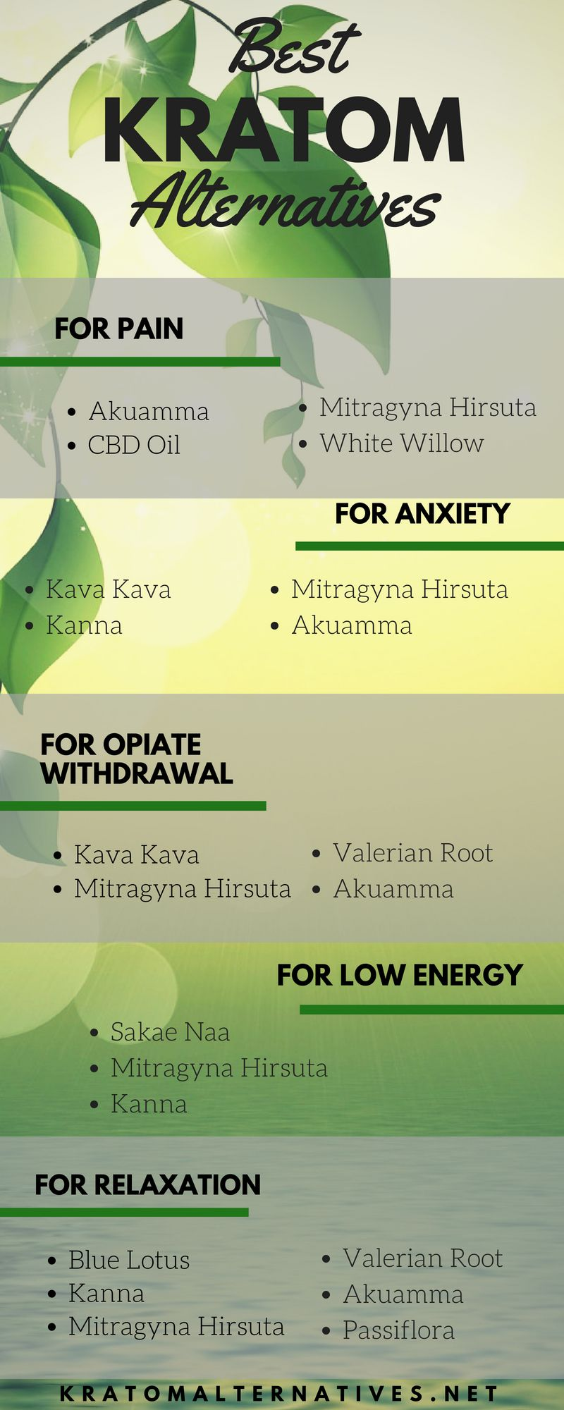 Best Kratom Alternatives For Pain Anxiety Opiate Withdrawal