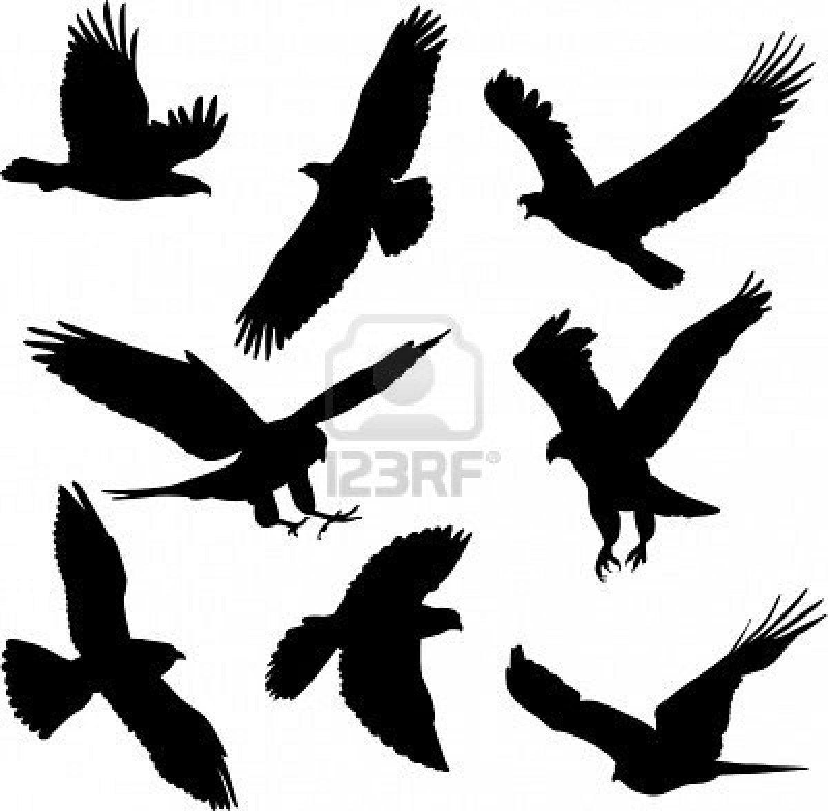 Bird sillhouettes