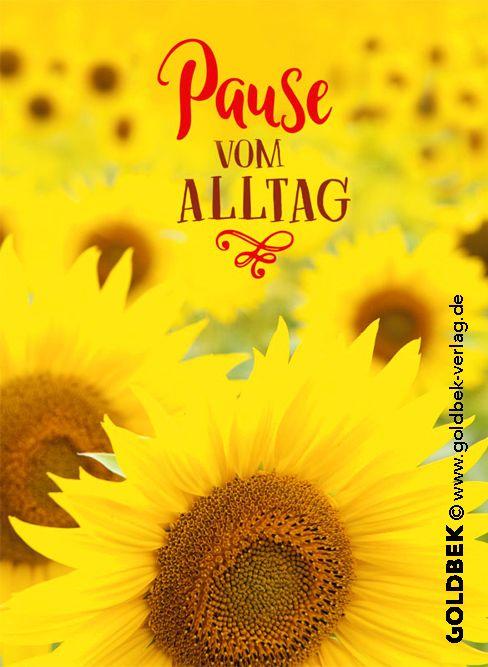 Postkarten Sonnenblumen Sehr Schönes Sommer Sonnen Gelbes