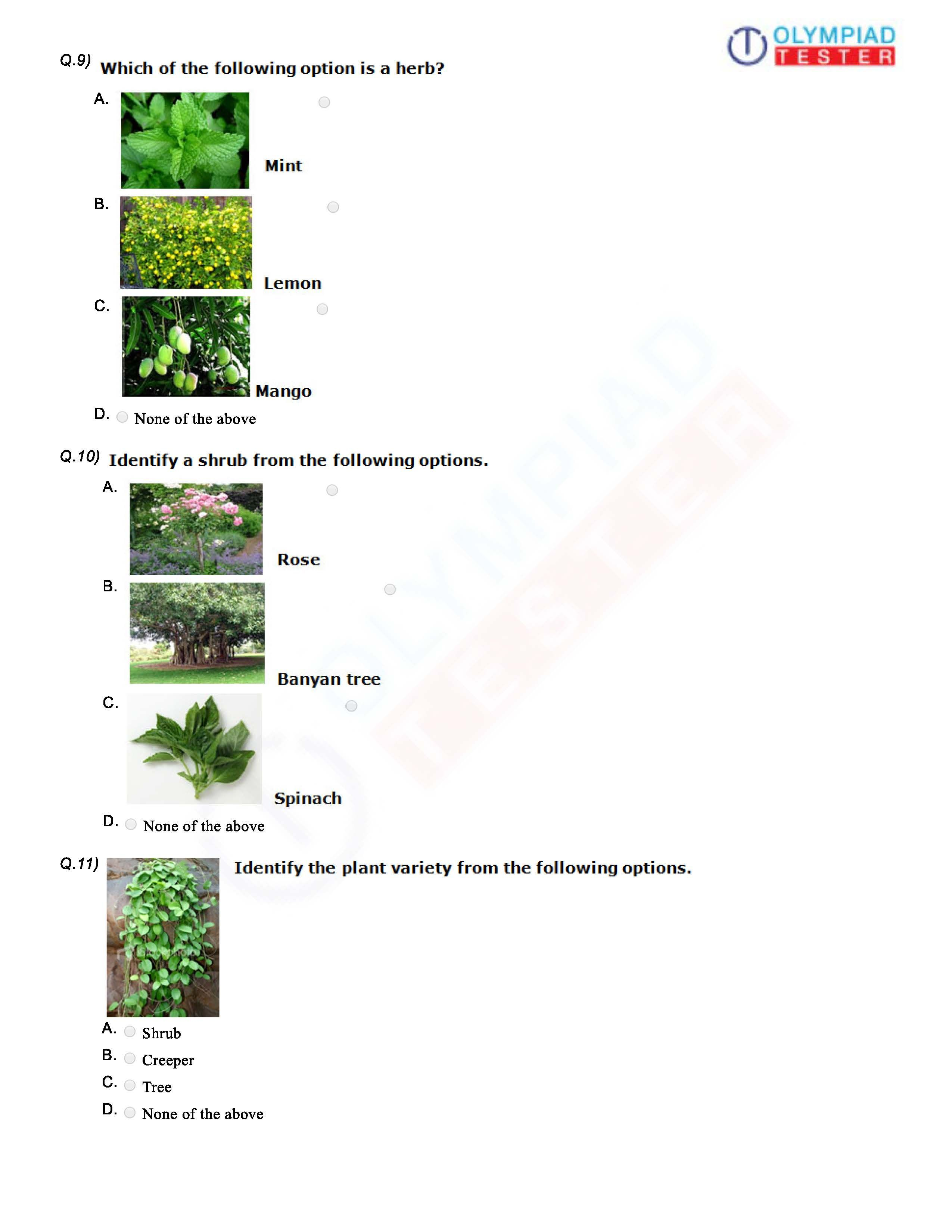 Download Class 1 Cbse Evs Worksheet On Plants As Pdf And Take A
