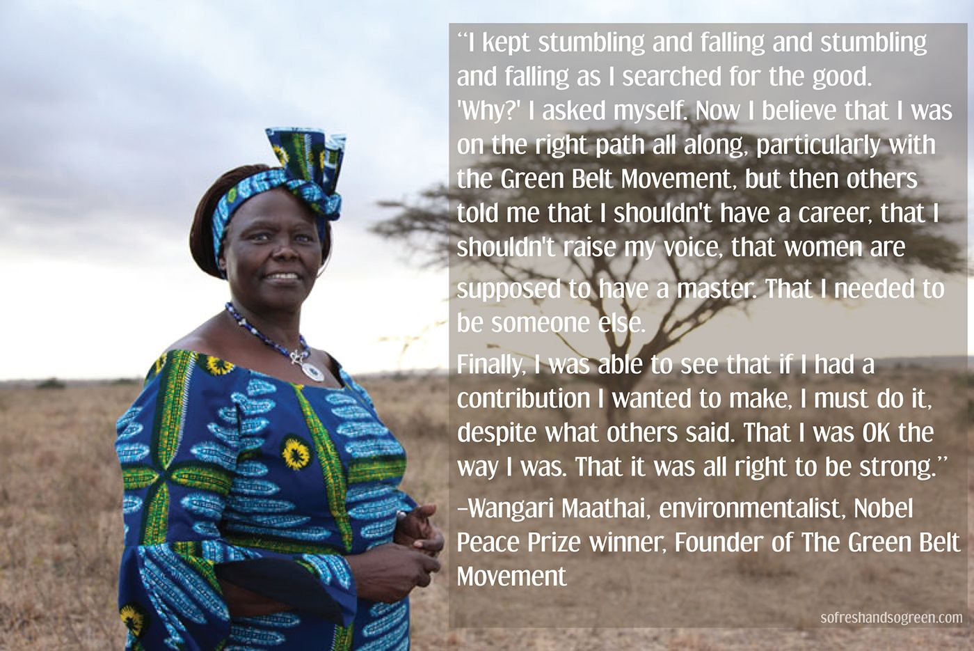 Wangari Maathai On Making A Difference In The World quote