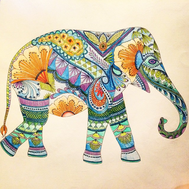 Coloring Ideas Elephant Millie Marotta Coloring Book Millie Marotta Animal Kingdom Animal Kingdom Colouring Book