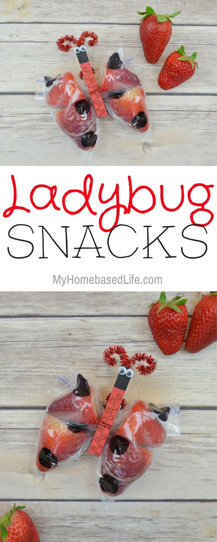 These ladybug snacks for kids is a perfect treat that is healthier