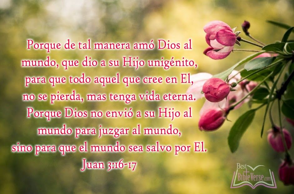 spanish christian quotes | Christian Bible Quotes In Spanish ...