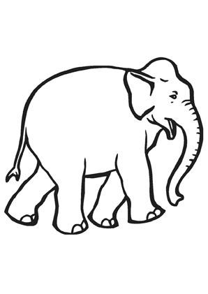 Ausmalbild Junger Elefant Zum Ausmalen Ausmalbilder Ausmalbilderelefanten Malvorlagen Ausmalen Schule Kin Ausmalen Elefant Elefant Ausmalbild
