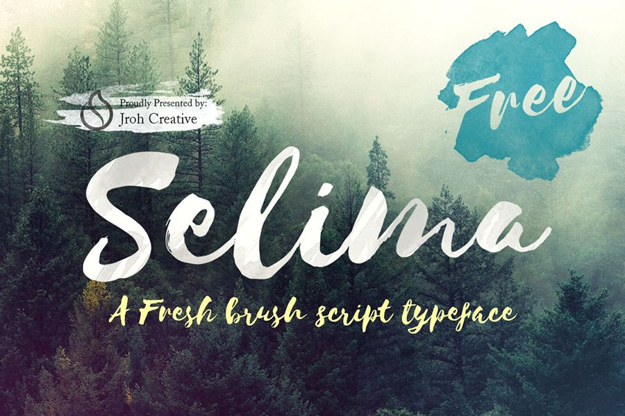 Selima Script Free Font From FreedesignresourcesNet Where You
