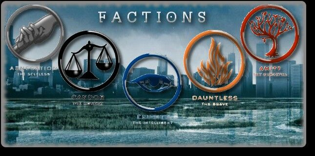 I dont belong to any of those factions because im divergent.