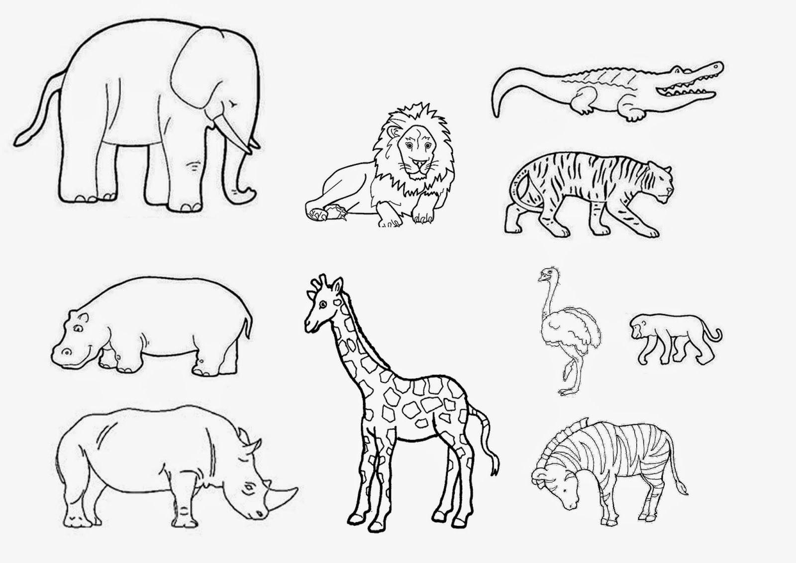 Gabarit animaux savane recherche google afrique et - Animaux afrique maternelle ...