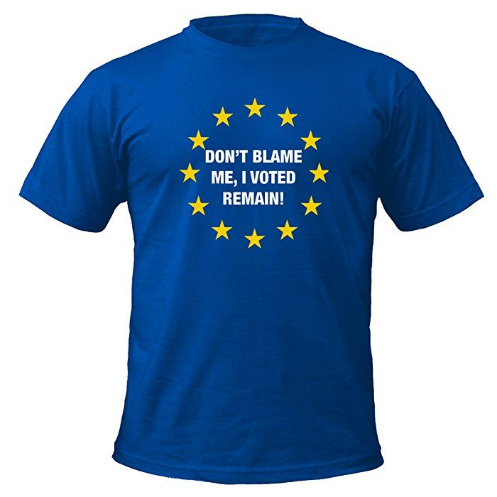 Don't Blame Me I Voted Remain T-shirt (BLUE, L)