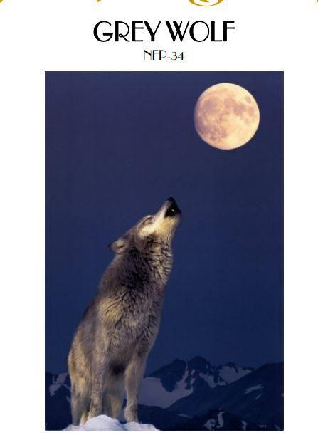 Free Wolf Pattern from Mystic Stitch