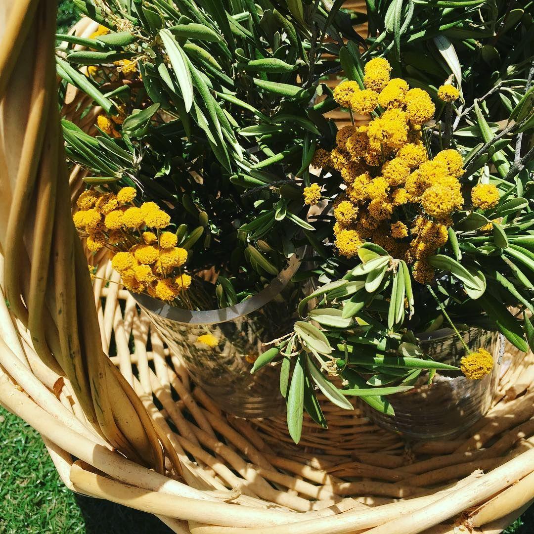 #cestasdemimbre sencillas pero muy especiales para una #boda inolvidable  #floressilvestres #olivo #bodaverano #bodaspersonalizadas