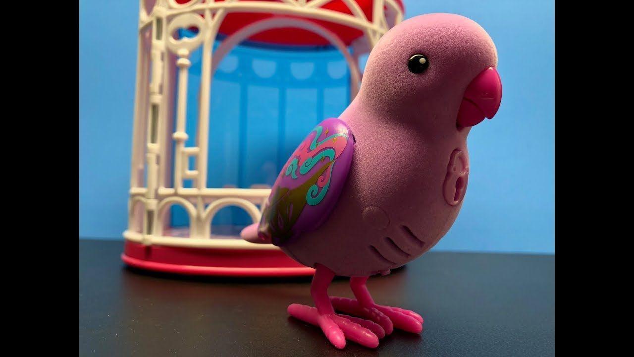 Talking Bird Littlt Live Pets Toy Hunt Pet Toys Birds Pets
