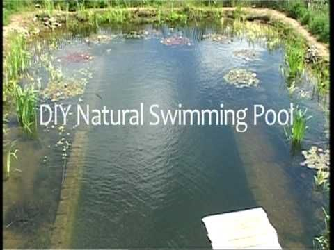 Diy Natural Swimming Pools Youtubehow To Build A Chemical Free Natural Swimming Pool For A
