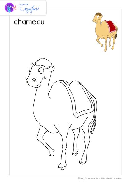 Gut bekannt animaux-ferme-dessin-a-colorier-chameau-coloriage | Animaux  FW17