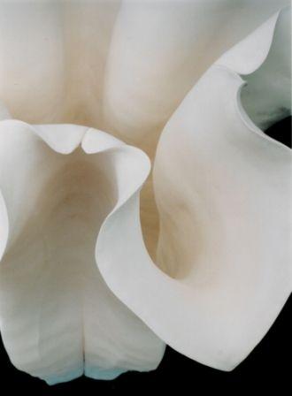 http://www.astriddahl.co.za/ ceramic art