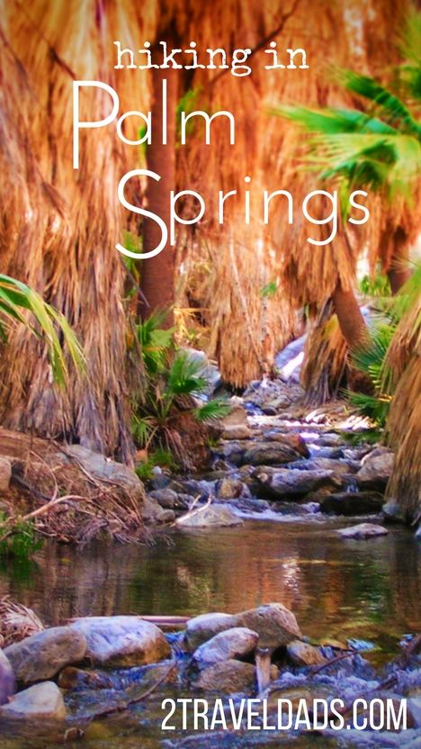 Hiking Palm Springs: Indian Canyons and the oasis