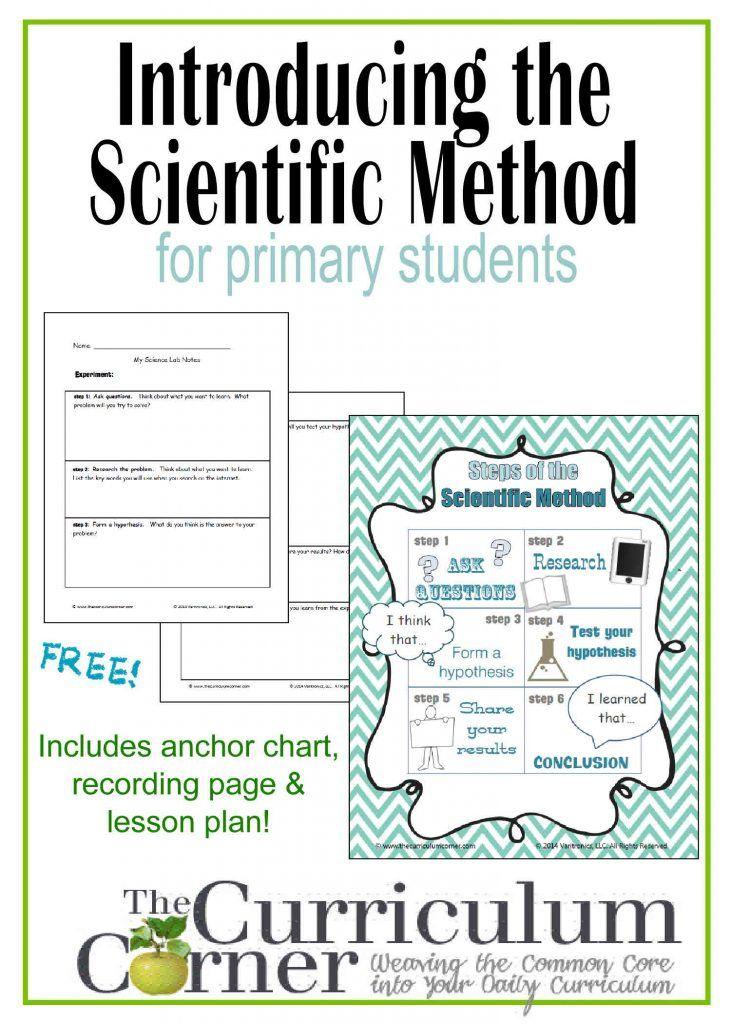 Scientific Method Foldable Freebie Cahier interactif Pinterest - scientific method worksheet