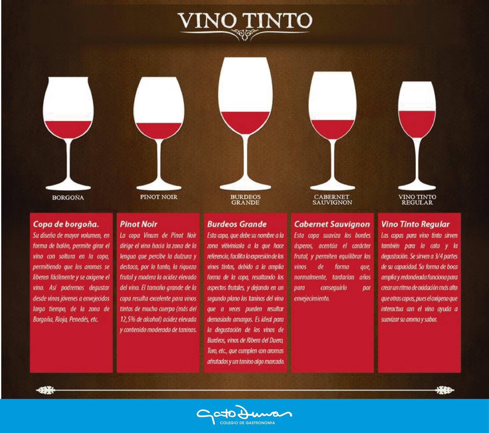 Tipos de copas para Vinos para Vino Tinto | CONOCIENDO DE