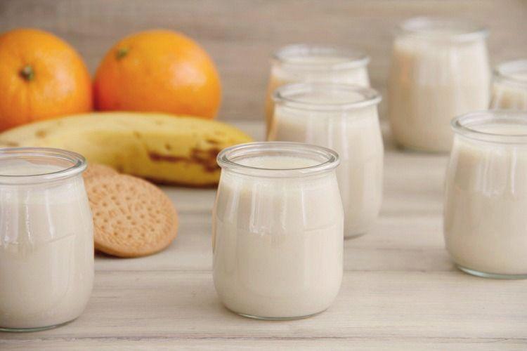 Yogur De Platano Naranja Y Galletas Yogurt Casero Yogur Y