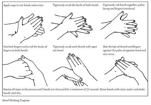Hand Washing Lesson Hand Hygiene Classroom Tools Hygiene Unit