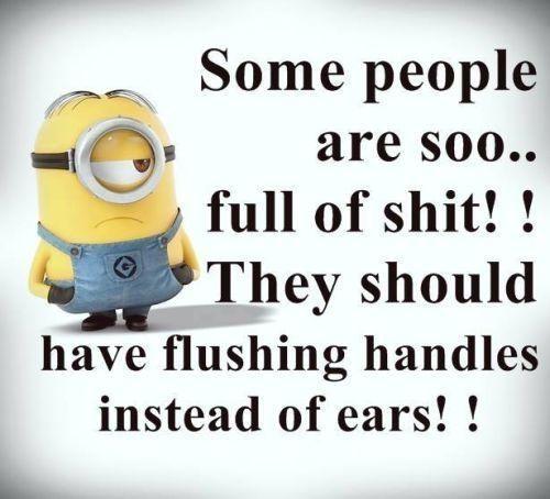 Top 40 Funny Minions Memes | QuotesHumor.com