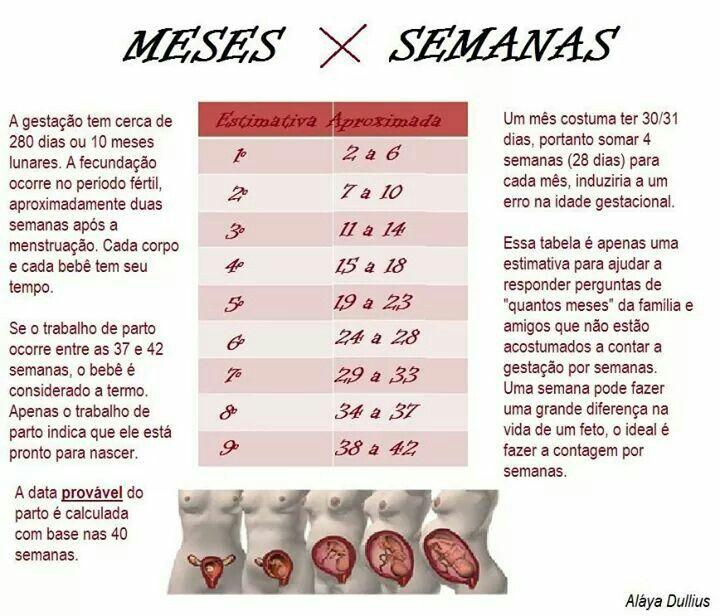 Meses X Semanas Semanas Da Gestacao Gestacao 7 Meses De Gravidez