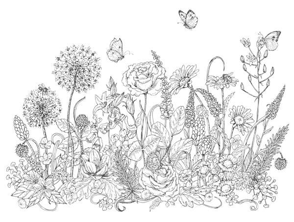 Pollinators And Wildflowers Coloring Page Wildflower Drawing