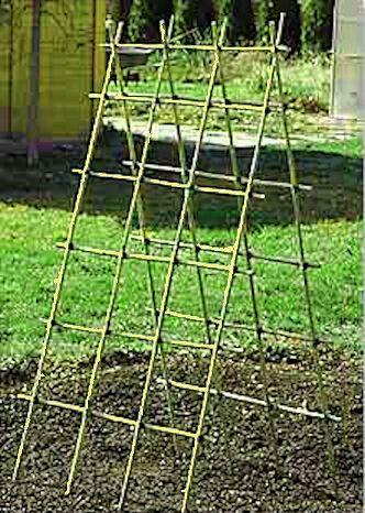 Building A Bamboo Trellis With Images Diy Garden Trellis