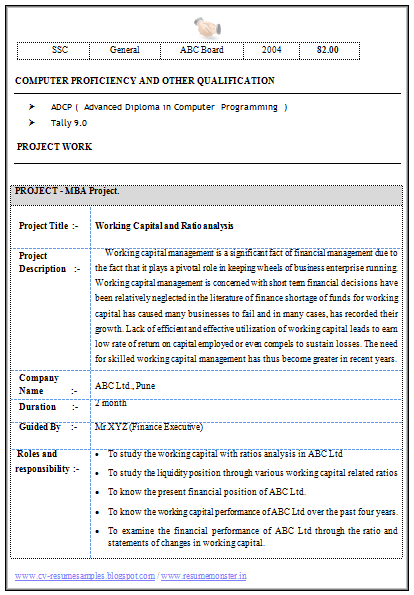 Attractive MBA Finance Resume Sample For Experience (2)