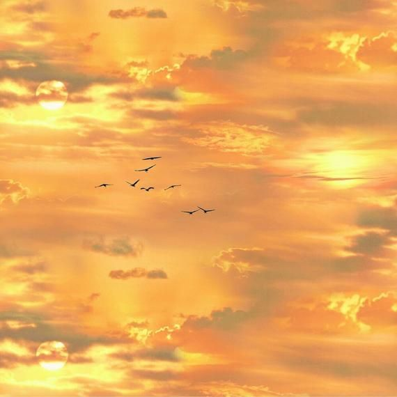 Gold Sunset Sky with Birds Cotton Fabric by Elizabeth's Studio