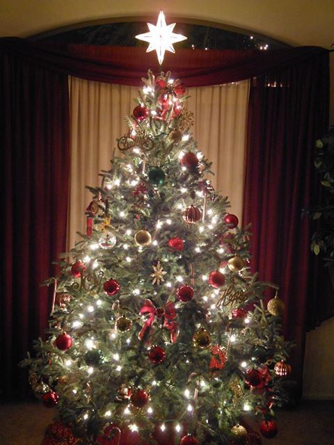 here is the pic as promisedfinally got all our family together to decoratethank you for the beautiful tree five star christmas tree co
