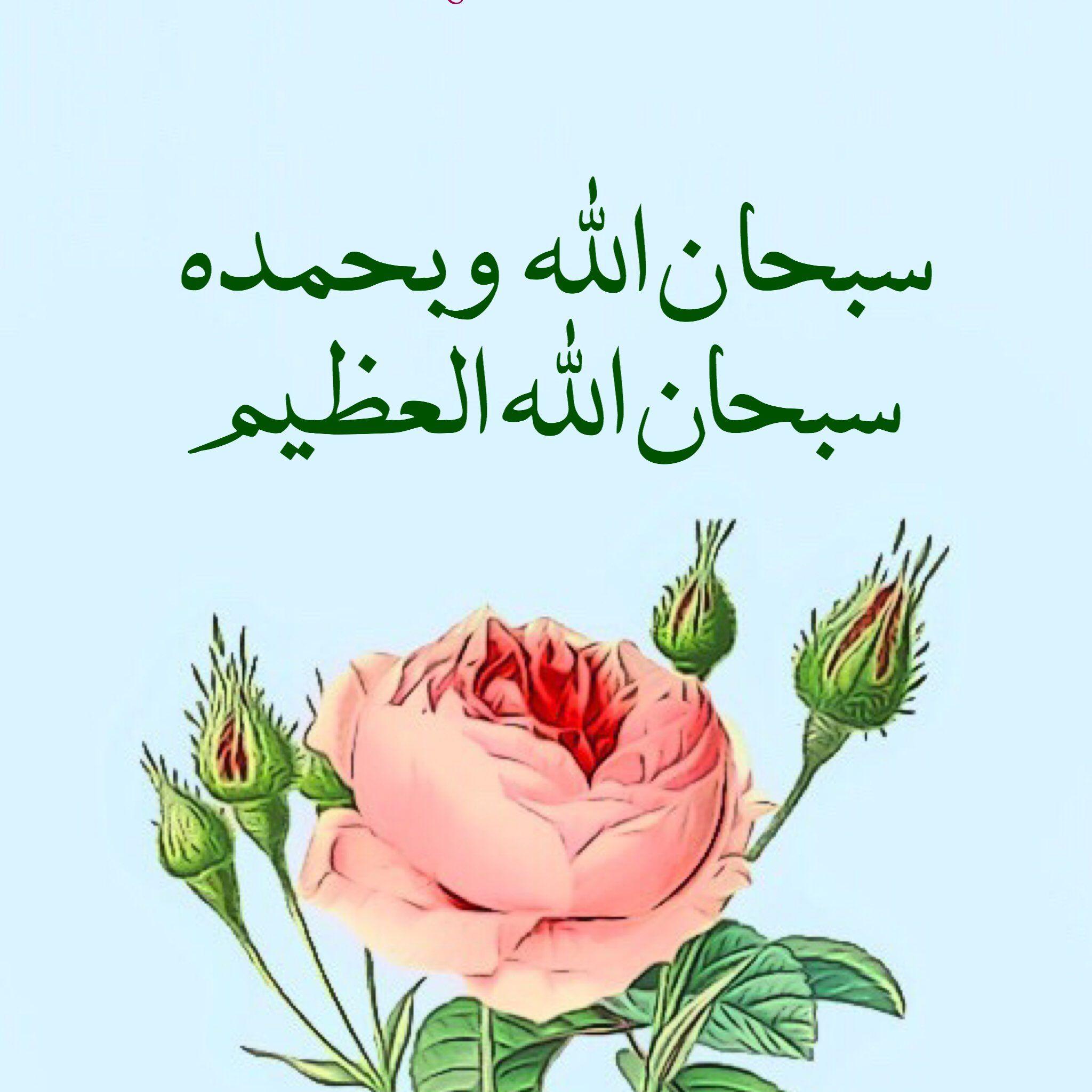 سبحان الله وبحمده سبحان الله العظيم Good Morning Flowers Rose Good Morning Flowers Morning Flowers