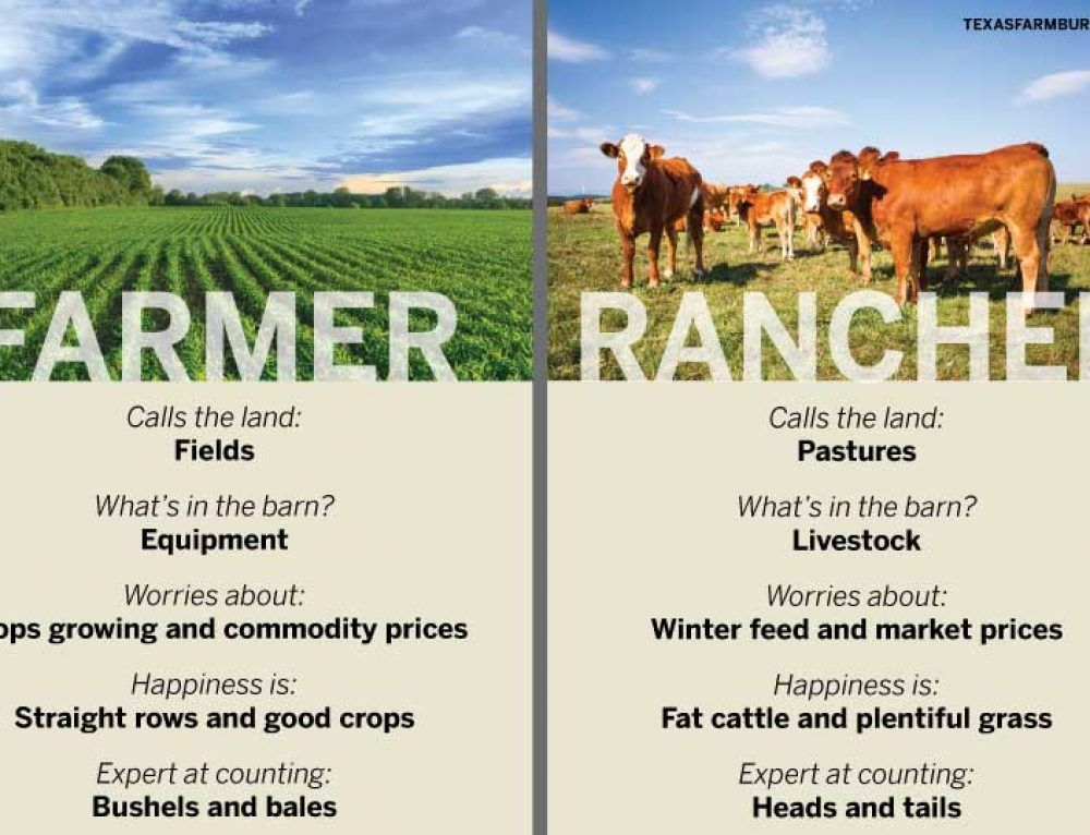 What's the difference between farmers and ranchers