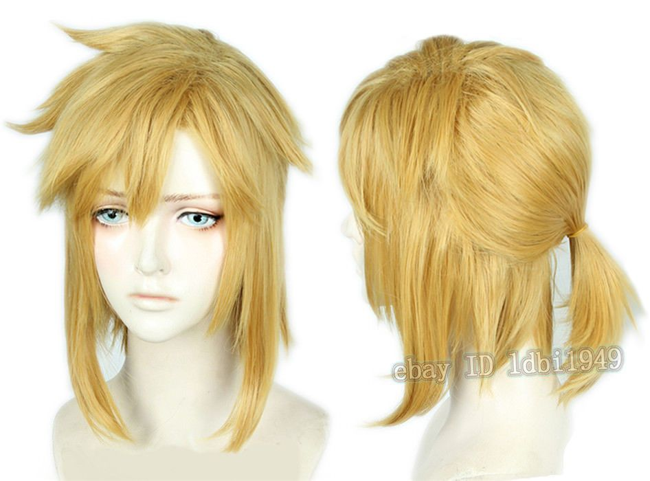 Link Wig The Legend of Zelda: Breath of the