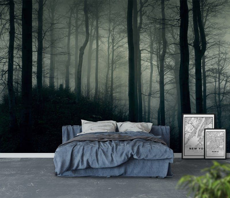 Foggy dark forest Wall mural Forest wall mural, Forest