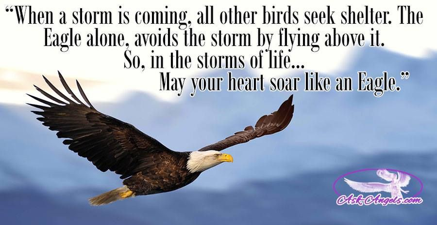 Ask Angels Com Timeline Photos Facebook Eagles Quotes Biblical Quotes Words Of Courage