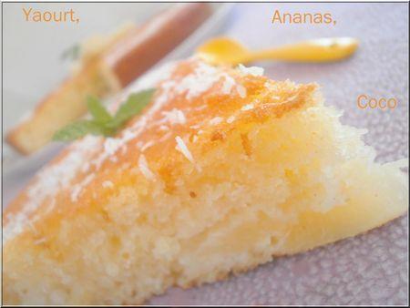 Gateau au yaourt ananas thermomix