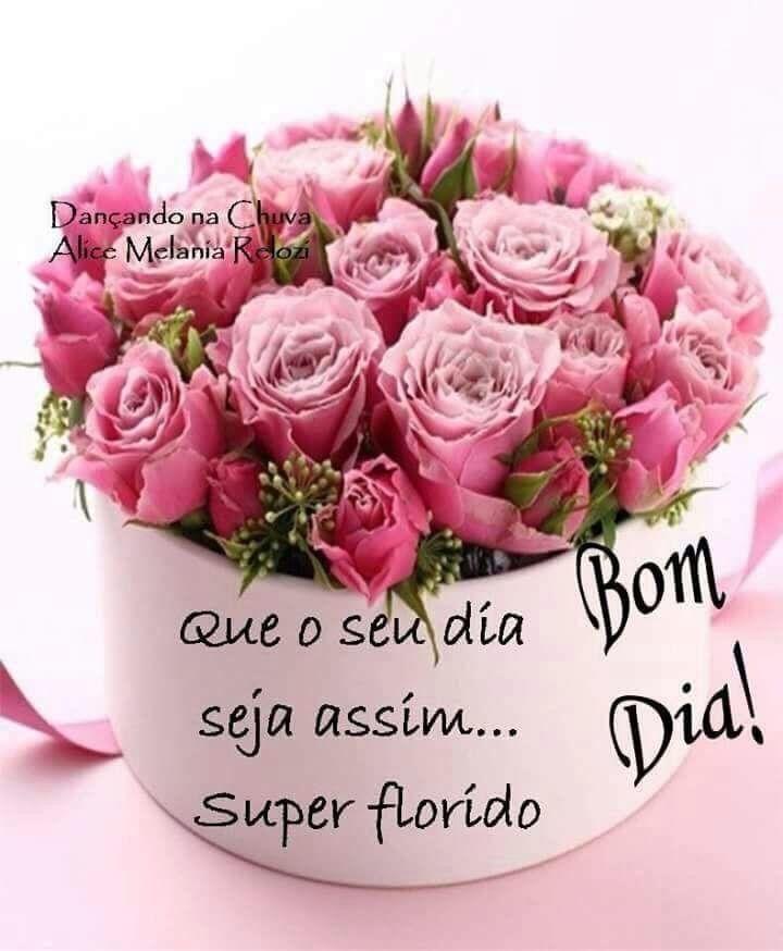 Pin De Maria Eduarda Pereira Ribeiro Em Bom Dia Com Imagens